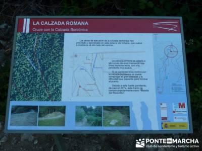 Esquema Calzada Romana - excursiones en julio y en verano; senderismo guadalajara; arbol tejo
